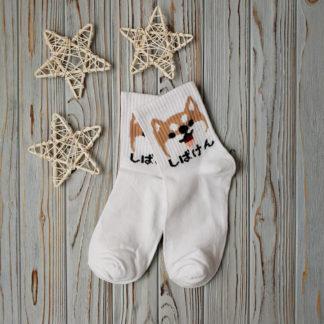 носки белые собака